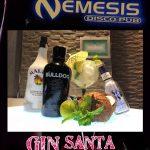 Nemesis - gin santa catalina